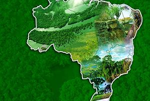 biomas brasileiros - destaque