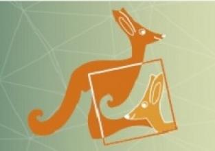 Estudantes do Pioneiro levam 61 medalhas no Concurso Canguru de Matemática