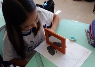Estudo das simetrias com espelho