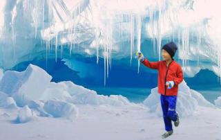 ferias de antartica
