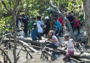 Estudo do Meio: 7ºs anos exploram a Ilha do Cardoso